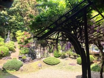 お庭が綺麗.jpg