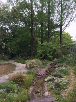 ガーデン5.jpg
